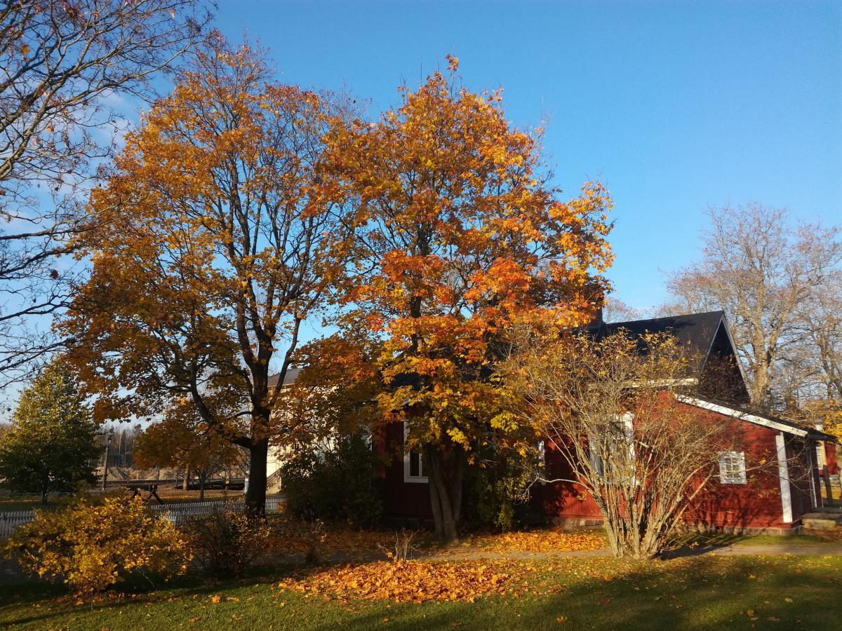 Rautatieläisten entinen asuinrakennus ja värikkäitä lehtipuita Rautatiemuseon puistossa syksyaikaan.